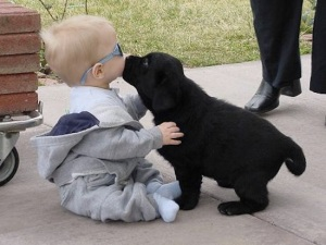Baby-and-Puppy
