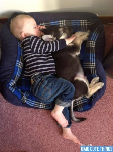 puppies-and-babies-010813-01