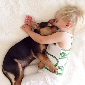 toddler-naps-with-puppy-theo-and-beau-2-19