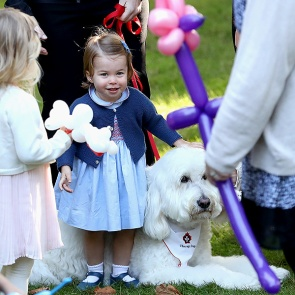 VICTORIA, BC - SEPTEMBER 29: Princess Charlotte of Cambridge plays with a dog named Moose at a children's party for Military families during the Royal Tour of Canada on September 29, 2016 in Carcross, Canada. Prince William, Duke of Cambridge, Catherine, Duchess of Cambridge, Prince George and Princess Charlotte are visiting Canada as part of an eight day visit to the country taking in areas such as Bella Bella, Whitehorse and Kelowna (Photo by Chris Jackson - Pool/Getty Images)